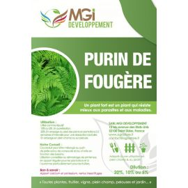 purin_fougere_agriculture_biologique