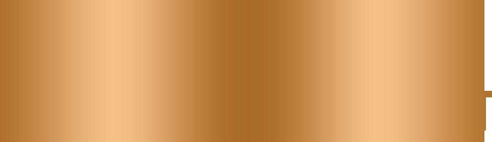 MGI Développement
